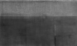 le champ vague 2018 malerei-zeichnung oel/graphit auf baumwolle 47,4 x 77,5 cm