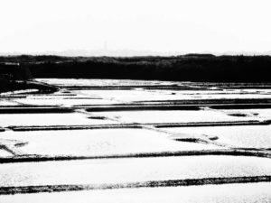 yvonne huggenberger fotografie - guérande 1-6
