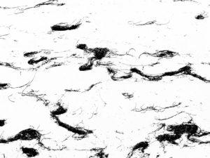 yvonne huggenberger fotografie - strandgut (keremma)