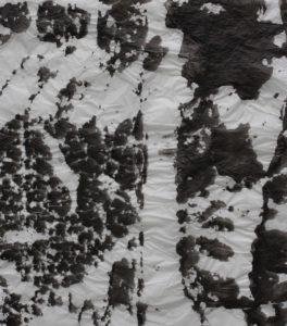 windgepeitscht 2018 malerei tusche auf papier 38 x 49,5 cm